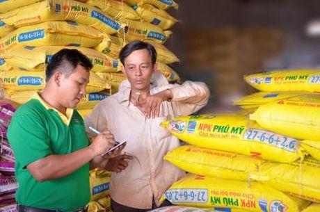 Phan bon Phu My duoc cong nhan Thuong hieu Quoc gia - Anh 1