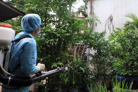 Kiem tra cong tac ngan ngua dich benh do vi rut Zika tai quan Binh Thanh - Anh 2