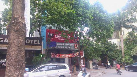 'Hoc vien' Kinh te Sang tao thach thuc Doan kiem tra lien nganh Ha Noi? - Anh 1