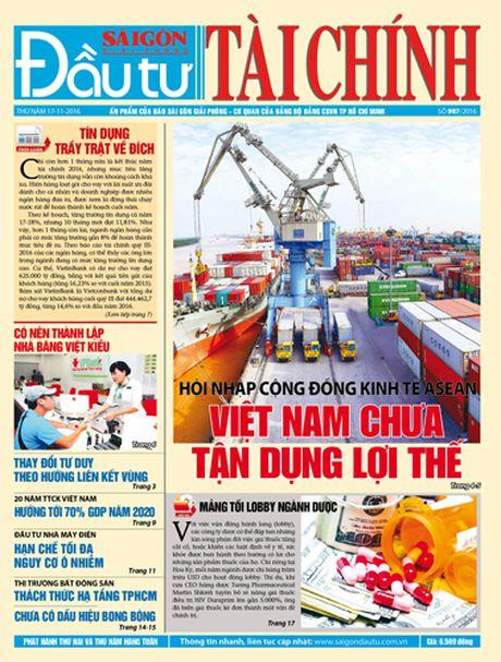 Don doc DTTC phat hanh sang thu nam 17-11 - Anh 1