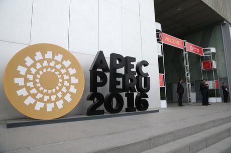 Hoi nghi APEC tap trung ban thao ve thuong mai tu do - Anh 1