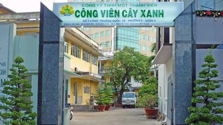 Cong ty Cong vien Cay xanh TP.HCM no lao dong gan 40 ty dong - Anh 1