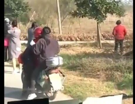 Choang canh hon 20.000 con vit chay qua duong khien xe co un u - Anh 1