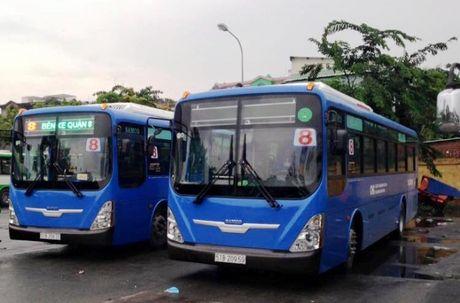 TP.HCM thay 55 xe moi tren 3 tuyen buyt - Anh 1