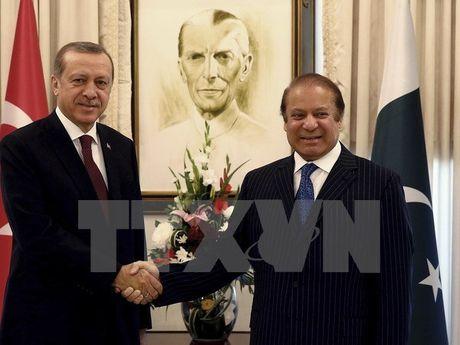 Pakistan va Tho Nhi Ky cam ket thuc day quan he song phuong - Anh 1