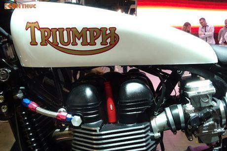Triumph Scrambler 'hang thua' chinh hang tu Bonneville T100 - Anh 6
