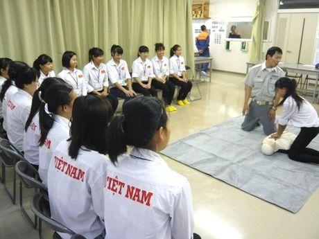 Nhat Ban ho tro khoi nghiep cho lao dong Viet Nam - Anh 1