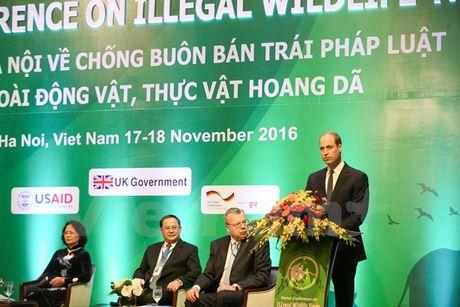 Hoang tu Anh: Can buoc tien manh me hon chong toi pham buon ban dong, thuc vat hoang da - Anh 2