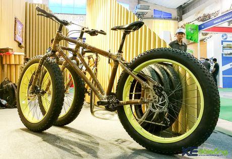 Doc dao xe dap 3 banh khung tre tai Viet Nam Cycle 2016 - Anh 1