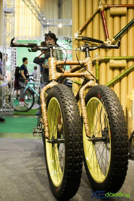 Doc dao xe dap 3 banh khung tre tai Viet Nam Cycle 2016 - Anh 6