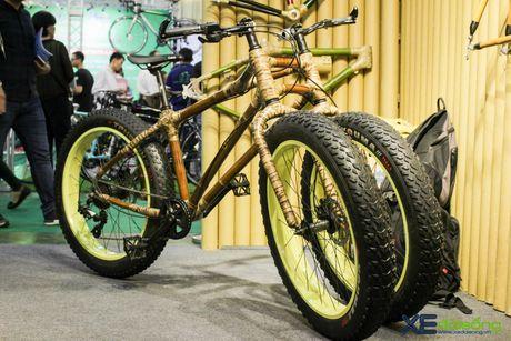 Doc dao xe dap 3 banh khung tre tai Viet Nam Cycle 2016 - Anh 7