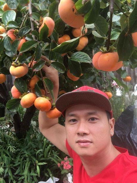Vuon trai cay 'nhin la them' cua ca si Han Thai Tu - Anh 4
