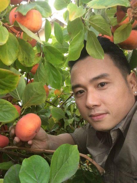 Vuon trai cay 'nhin la them' cua ca si Han Thai Tu - Anh 5