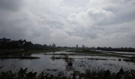 Nam Dinh: O nhiem nang tu lang nghe tai che nhom Binh Yen - Anh 2