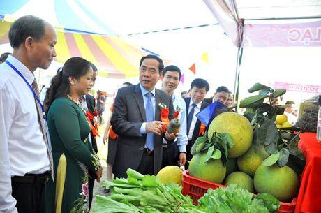 Khai mac Phien cho vung cao tinh Hoa Binh nam 2016 - Anh 1