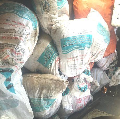 Bat xe van chuyen gan 600 kg noi tang va bi lon da boc mui hoi thoi - Anh 1