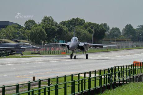 Hoanh trang tiem kich F-15/16 Singapore ha canh tren quoc lo - Anh 2