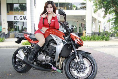 Bong hong 'sexy nong bong' ben Kawasaki Z1000 - Anh 1