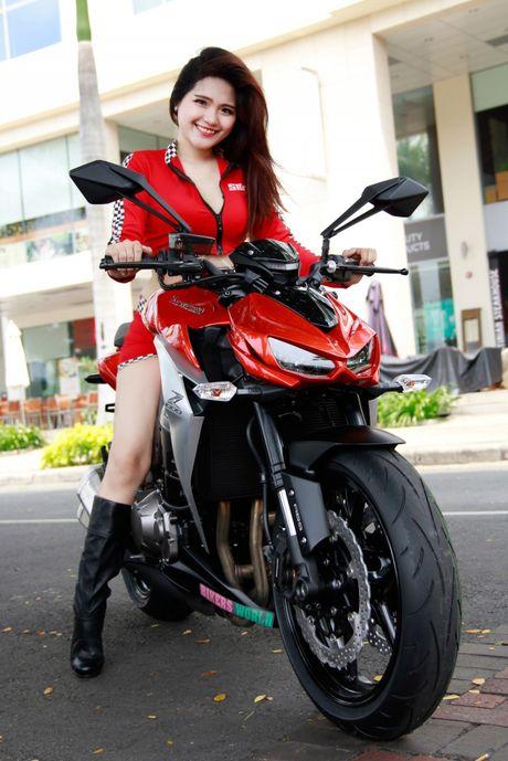 Bong hong 'sexy nong bong' ben Kawasaki Z1000 - Anh 5