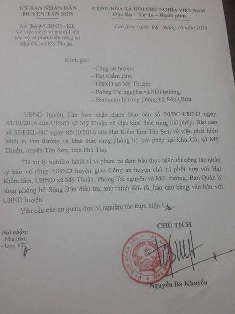 Tan Son (Phu Tho): 'Bi an' dang sau con duong an sau vao rung phong ho! - Anh 3