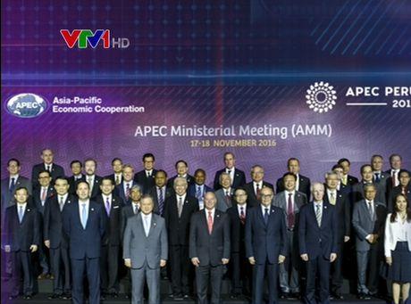 APEC can tiep tuc the hien vai tro la dong luc cua tang truong - Anh 1
