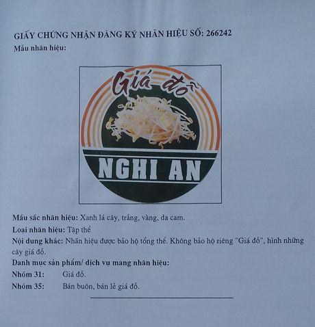 Gia do Nghi An dang ky nhan hieu tap the, bao ve uy tin san pham - Anh 1