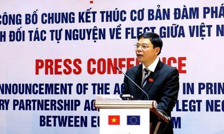 Do go Viet Nam vao EU phai dam bao tinh hop phap - Anh 1