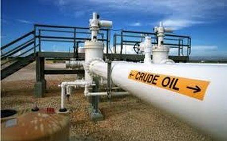 TT dau TG ngay 18/11: Gia giam do dong do la manh xoa di lac quan ve thoa thuan OPEC - Anh 1