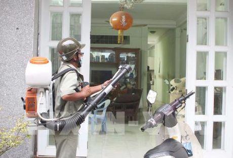 Tp. Ho Chi Minh: So ca nhiem vi rut Zika tiep tuc tang - Anh 1