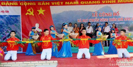 Hoi Son (Anh Son): Don bang cong nhan xa dat chuan nong thon moi - Anh 1