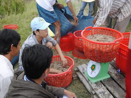 Thuong lai Trung Quoc gia khach du lich thu mua hai san - Anh 1