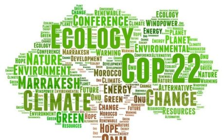200 quoc gia tai xac nhan ung ho Thoa thuan Khi hau Paris tai COP 22 - Anh 1