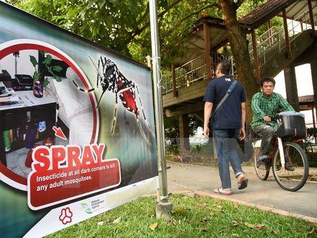 Campuchia rut lai thong bao ve truong hop nhiem virus Zika dau tien - Anh 1