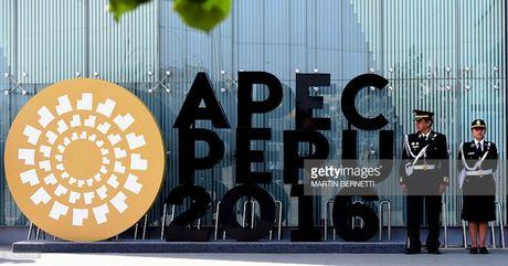 Hoi nghi APEC 2016 thuc day thuong mai tu do - Anh 1