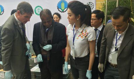 Viet Nam cam ket quyet liet chong buon ban dong, thuc vat hoang da - Anh 1