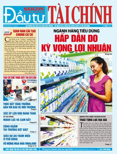 Don doc DTTC phat hanh sang thu hai 21-11 - Anh 1