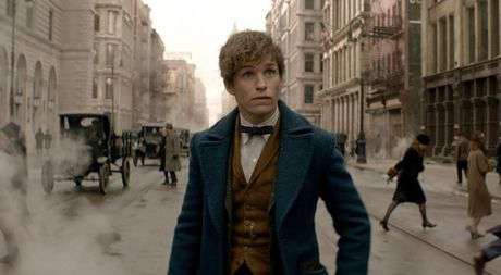 7 dieu ban can biet truoc khi xem phim Harry Potter moi - Anh 1
