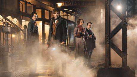 7 dieu ban can biet truoc khi xem phim Harry Potter moi - Anh 3