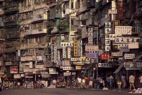 Khu o chuot day ray toi pham mot thoi o Hong Kong - Anh 2
