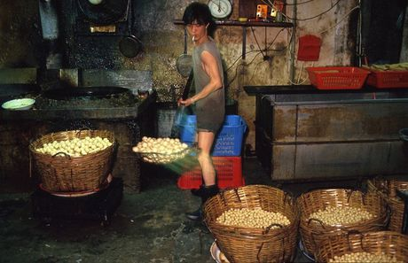 Khu o chuot day ray toi pham mot thoi o Hong Kong - Anh 6