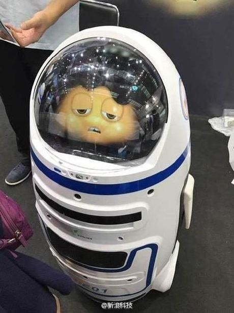 Robot Trung Quoc tong vao be kinh lam 1 nguoi bi thuong - Anh 2