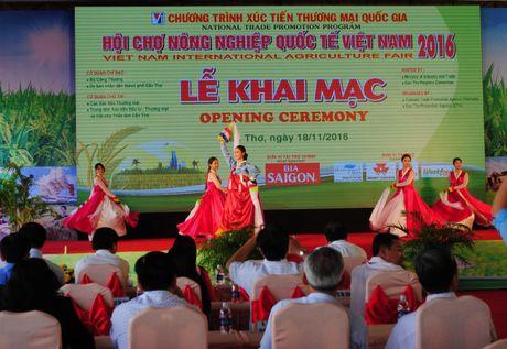 50 doanh nghiep Han Quoc tham gia Hoi cho nong nghiep tai Can Tho - Anh 1