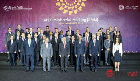 Hoi nghi APEC 28 nhat tri day manh ba tru cot hop tac - Anh 1