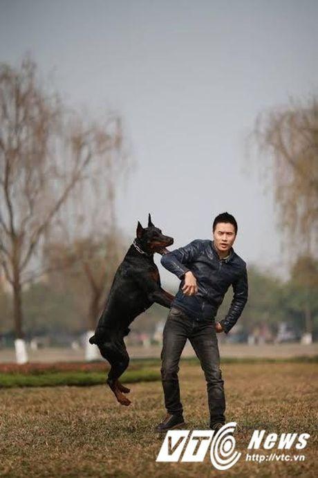 Chang trai Ha Thanh so huu trang trai cho Doberman tien ty - Anh 2