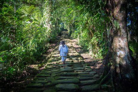 Choang ngop voi thanh pho co dang khai quat tai Colombia - Anh 5
