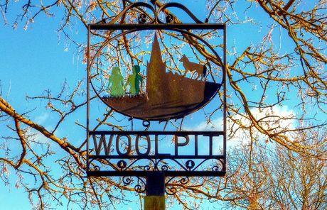 Nhung dua tre co lan da mau xanh luc bi an tu lang Woolpit - Anh 3