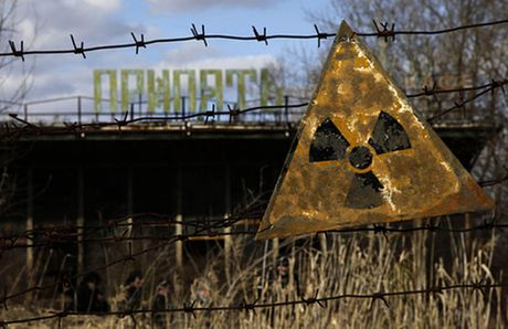 Vung dat chet Chernobyl sap hoi sinh - Anh 1