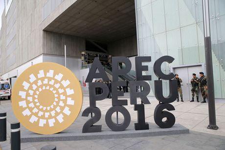 Hoi nghi Cap cao APEC 2016: Dau tranh chong chu nghia bao ho - Anh 1
