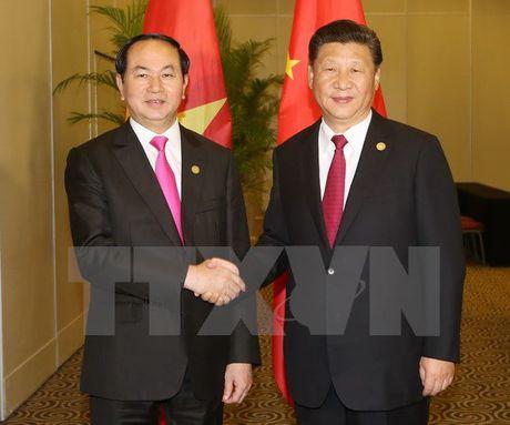 Chu tich nuoc gap go lanh dao the gioi tai APEC - Anh 1