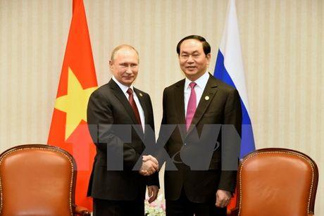 Chu tich nuoc gap go lanh dao the gioi tai APEC - Anh 2